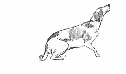 [animated] Dog turn study by Tempted-Fate
