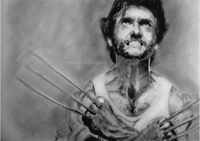 Hugh Jackman: The Wolverine by worthgold