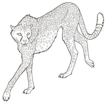 Cheetah Lineart by ReQuay