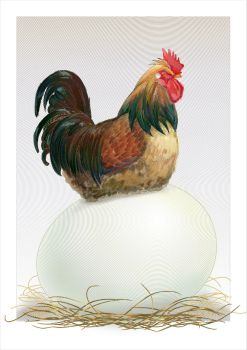 Egg by overcover