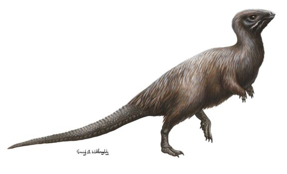 Kulindadromeus by EWilloughby
