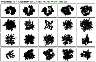 Plan Trees by thesuper