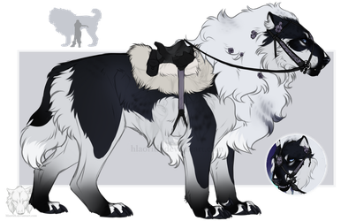Tack and Size Reference: Jacinta by Hlaorith