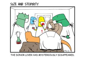 Donor by Size-And-Stupidity