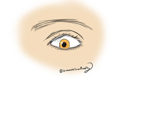 Amber Eye by DreamsWishesReality
