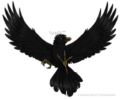Shadow the Crow by Nightrizer
