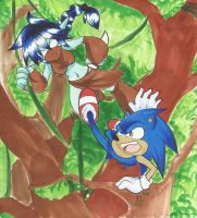 Request: Sonic vs Stealth Elf by MAD-project