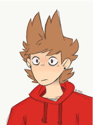 Tord by CatEyes-To-CatTails