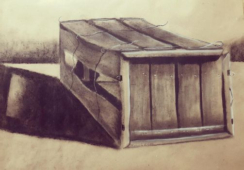 Think Outside The Box by TheAutumnDruid