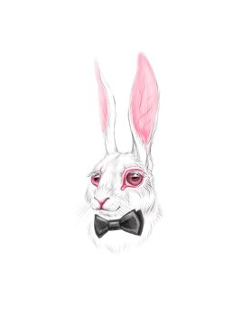 White Rabbit by vincvincit
