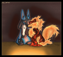 Lucario and Hawkie by Ziali