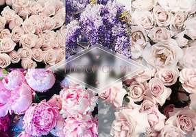 Photopack 014# - Flowers by Efruse