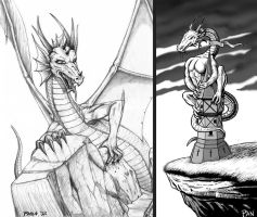 Dragons by Panaiotis