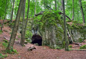 bear's cave by quapouchy