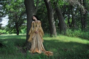 Gold Dress 038 by elusiveelegance