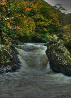 Rapid Waterfall by jayvoh