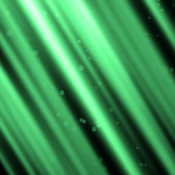 Animated Shimmering Lights Background v8 by Blackcatmagick41