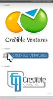 Credible Ventures Logo Samples by mohsin1983