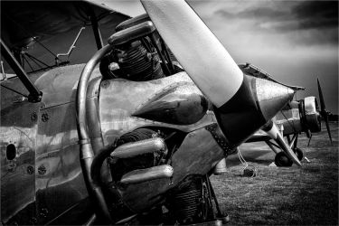 Silver Bullet by Daniel-Wales-Images