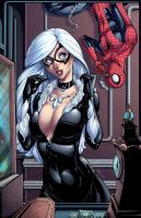 Black Cat and Spider-Man by DStPierre