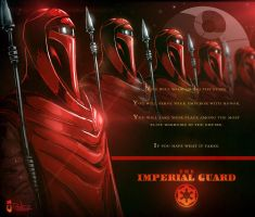 The Imperial Guard by pitnerd
