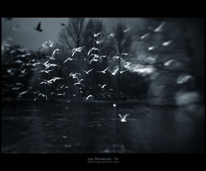 the Departure by yv