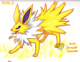 +JOLTEON+