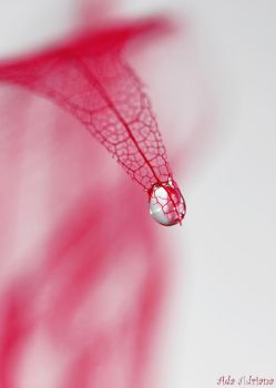 Waterdrop by ada-adriana