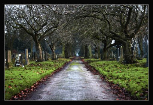 A walk through the graveyard. by nobody-