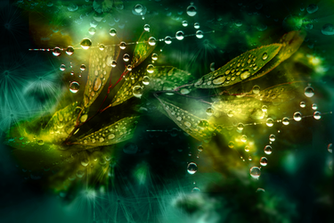 Tekstura GreenYellow by Chedey111