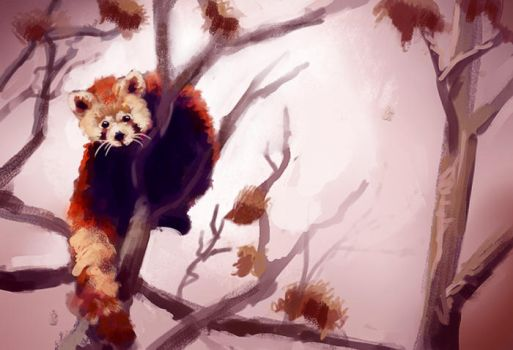 Red Panda by MathiasZamecki