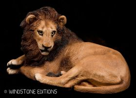 Lion by Reptangle