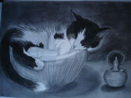 Drinni, my cat by GokkiVanGogh