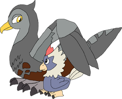 Unfezant and Rufflet