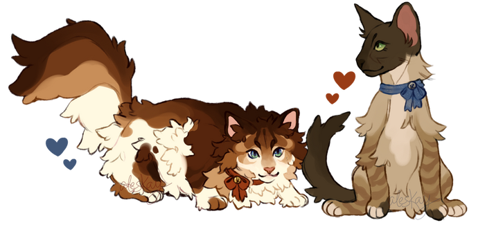 kitten adopt auction!!! (closed!) by aleskay