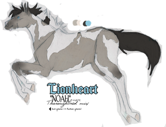 Lionheart Mini-Reference by winterlocked