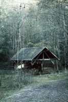 Cabin in the Woods II by merkero