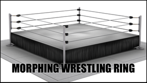 Morphing Wrestling Ring For DAZ Studio by sedartonfokcaj