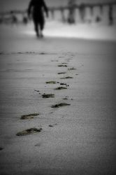 Footsteps Of The Wise by VegasGirl17