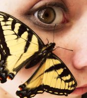 brand new eyes. by bellatrixlawliet