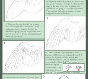 Realistic Wing Tutorial II by windfalcon