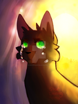 Longing for the Sun (Hollyleaf Tribute) by StarGazingHipster
