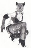 Halle Berry as 'Catwoman' by Lisa99