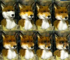 Airbrushing a red fox by Crystumes