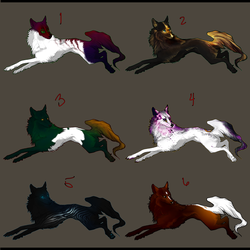 New Wolf Adopts (Closed) by xXNamaste