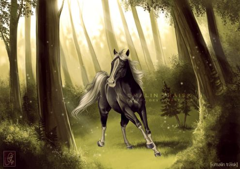 Jewel of the Forest by cerona