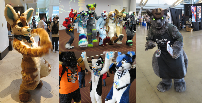 AC 2015 - Over 13,000 photos and 456 GIFs by chiscringle