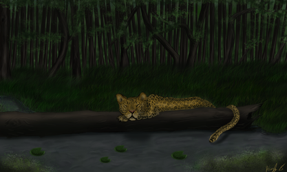 Resting Leopard by HORSY890