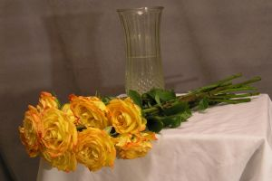 Gold roses 01 by lockstock