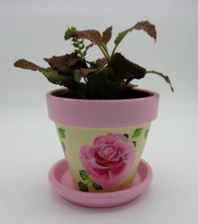 Hand Painted Pink and Ivory Flower Pot by sweetpie2